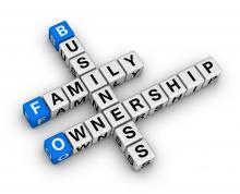 Cégcsoport, családi vállalkozások